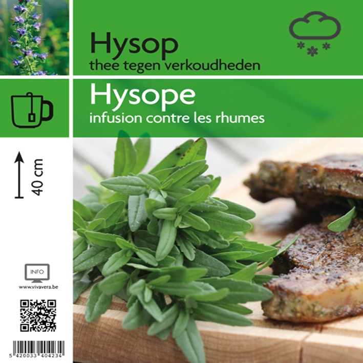 Hysope